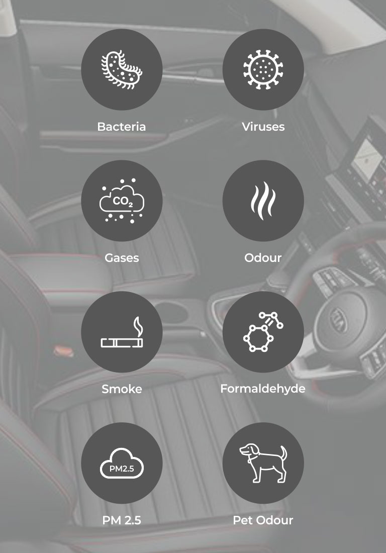pollutants-in-the-car